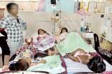 Dengue bedlam at Kalubowila
