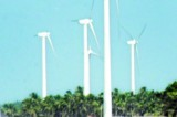 Whirlwind  over windmill  contracts