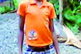 Student's death fall from mango tree: Principal arrested