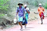Kataragama: Beyond the festival, a story  of people and faith
