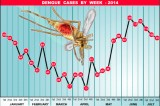 Dengue battle costing millions but it's starting to work, say officials