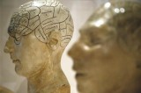 Myth that we use just 10% of our brains