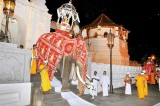 Stars of the Esala Perahera have no place to bathe