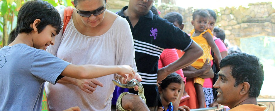 Fancy petting a python? Snuggling up to a sand boa?
