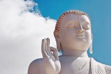 The middle path  and the way forward for Buddhism in  the 21st Century