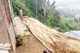 Brace for more landslides with climate change