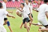 HARFA greens take major honours