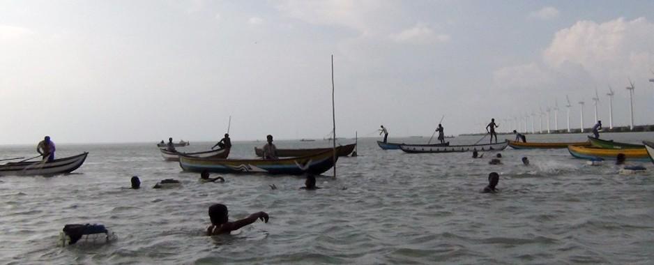 Plenty of fish in the sea, fishermen despair