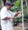 Rural Sri Lankan entrepreneur develops adjustable coconut plucking pole