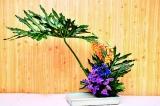 Ikebana million blooms to help Thalassemia unit