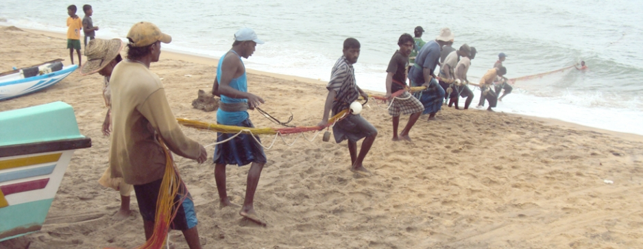 Fishing around in Chilaw