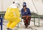 Compound from Chinese medicinal herb shows promise for Ebola