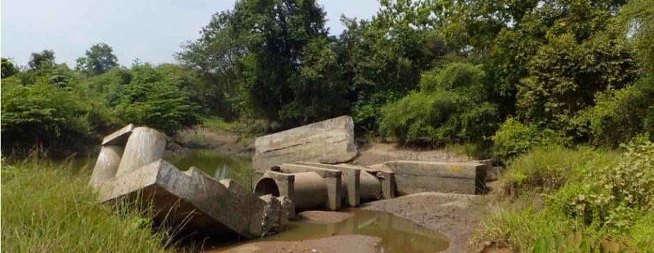 Protect Wilpattu- a precious national treasure