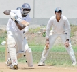 Junior cricket – entries open