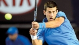 Man for all  surfaces – Djokovic