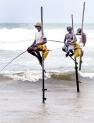 Stilt fishermen of the southern coast
