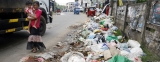 Garbage rots on roadsides as councils fumble for lasting solutions