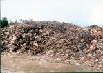 Grand garbage plan creates stink in Rathgama