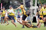 Rugby rumbled at Longden Place