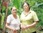'Dhuwili Mal' A glimpse on shanty lives