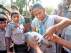 Cub Pack Holiday 2015 – Wattala Ja-Ela Scout Association