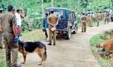 Mystery deepens over murders of women