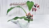 The art of Ikebana unfolds