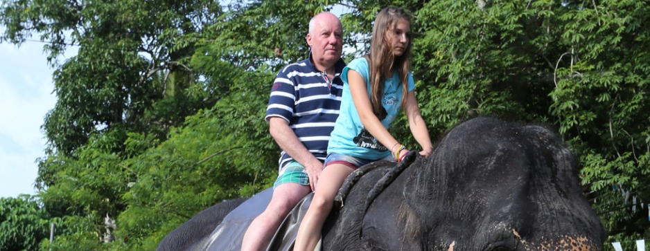 Elephant rides face oblivion from European call to action on cruelty