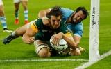 Springboks flash past Pumas in playoff