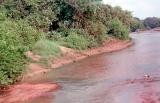 Wilpattu reserve endangered