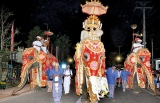 The annual Kelaniya Duruthu Maha Perahera was held this week