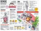Poor rubbish  collection hatching more dengue menace