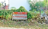 Unattended lands prime source of dengue breeding grounds, says PHI's Union
