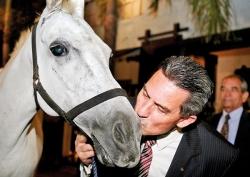 A 'Horsey' affair