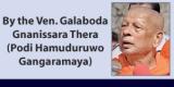 Blessings of Navam Perahera: Prelate speaks out on elephant issues