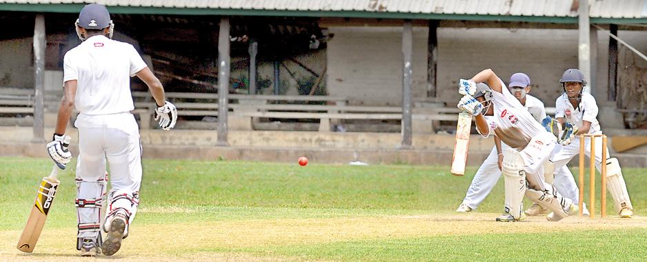 Fighting the school cricket monster