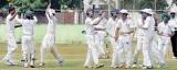 School Cricket! Where is it heading?