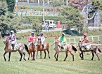 Ex-Lankan jockeys back in their saddles