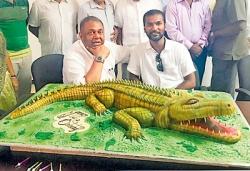 Crocodile fears and cheers