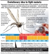 Malaria's deadly comeback