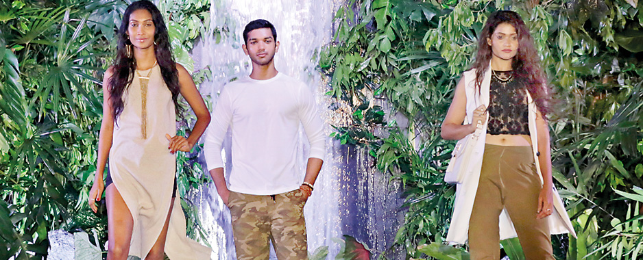 Shades of rainforest
