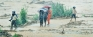 Little coordination, no deterrent laws main reasons for landslide tragedies