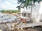 Destruction in Ariyagama Chilaw by recent heavy rains