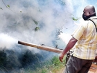 Dengue epidemic looms with spiralling costs