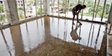 Destroying breeding grounds  vital to curb dengue: Study