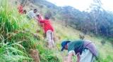 Lost in the  jungles of Ahumullekanda