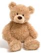 The kind old teddy bear