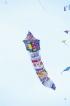 Derana 'Lokaya SahaLokayo' International Kite festival