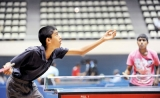 TT  a national hobby with vested interests playing ping pong