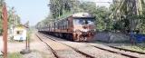 More deaths at protected railway crossings